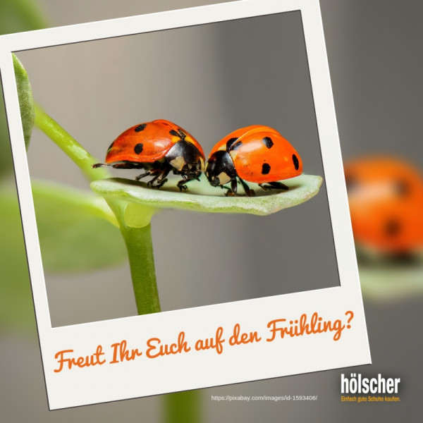 IG-Freut-Ihr-Euch-auf-den-Fr-hling_